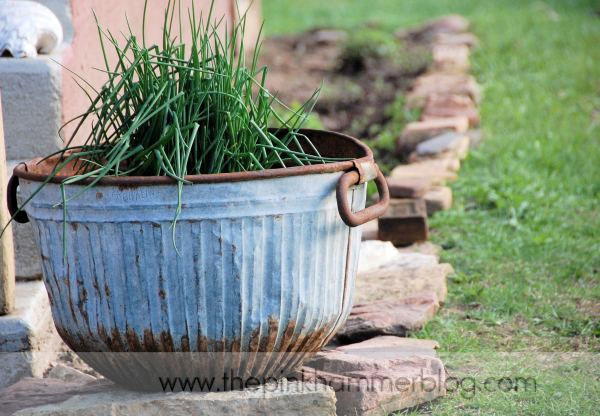 creative chive container garden, container gardening, gardening, Creative chive container garden