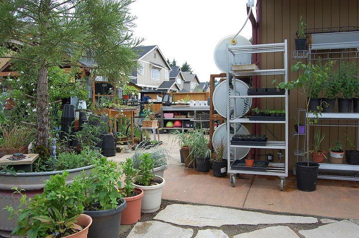 My planting station