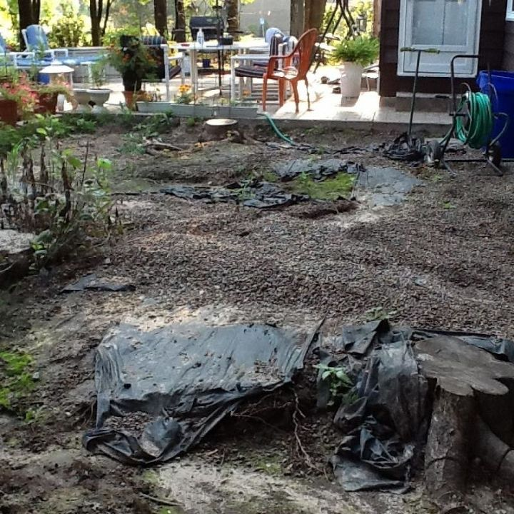 gravel pit what to do, gardening, landscape, Here u go all three stumps