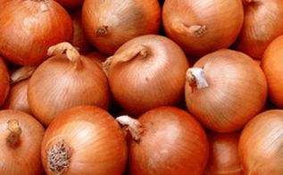 why won t my garden onions grow larger, gardening