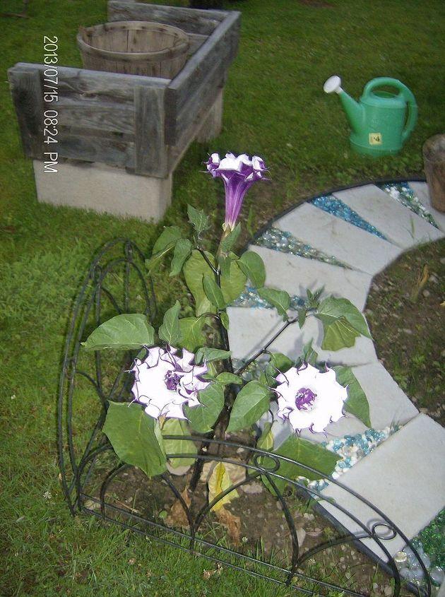 new spring 2013 flower garden, flowers, gardening