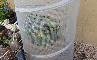 great find for covering plants, container gardening, gardening, repurposing upcycling, completely covering plant all the way to the ground