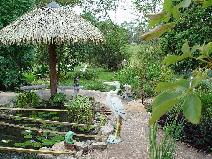 pond amp heron, outdoor living, ponds water features, Where s the Heron