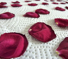 how to dry flowers the fast and easy way, crafts, flowers, gardening, They should look and feel dry but not dessicated and crumbly