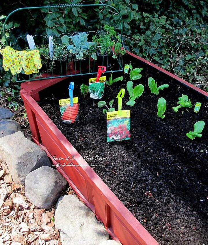 Finished raised bed planted with cool season vegetables.