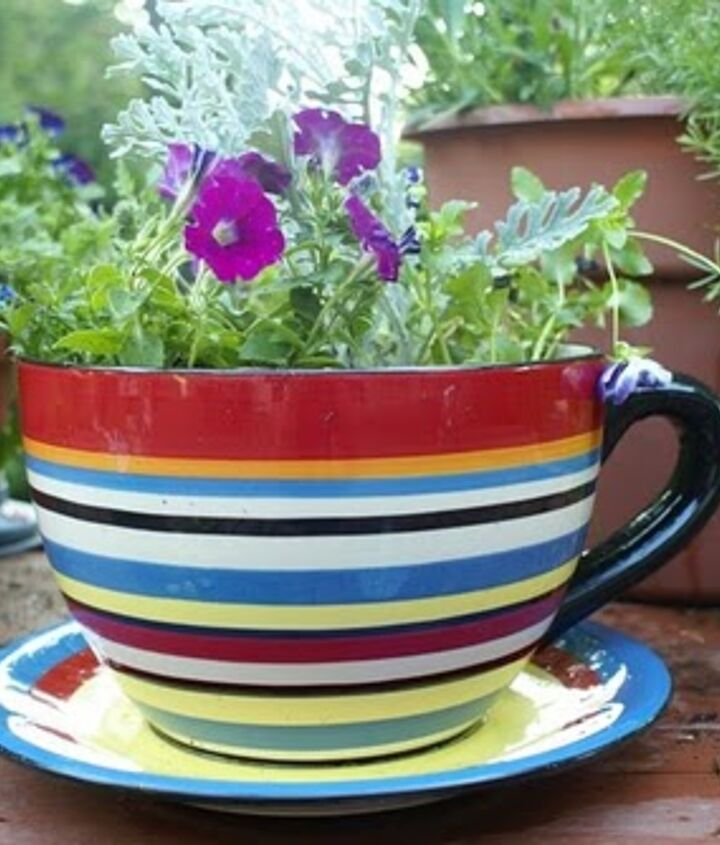 """This cute little teacup planter is one of Anne's """"Creative ideas for portable gardens."""" If you think this is cute, you should see what else is there! http://themicrogardener.com/creative-ideas-for-portable-gardens/"""
