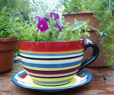 "This cute little teacup planter is one of Anne's ""Creative ideas for portable gardens."" If you think this is cute, you should see what else is there! http://themicrogardener.com/creative-ideas-for-portable-gardens/"