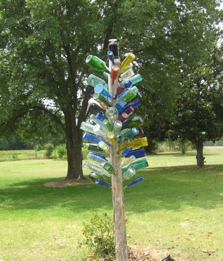 bottle tree, gardening