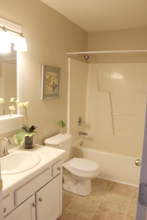 100 guest bath makeover w a pottery barn inspired bathroom mirror, bathroom, diy renovations projects, remodeling