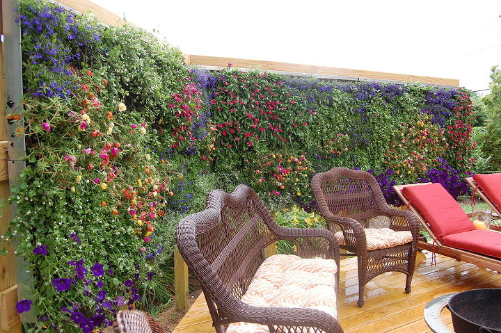 MY home deck featuring my beaqutiful green wall installed ... on Green Wall Patio id=25329