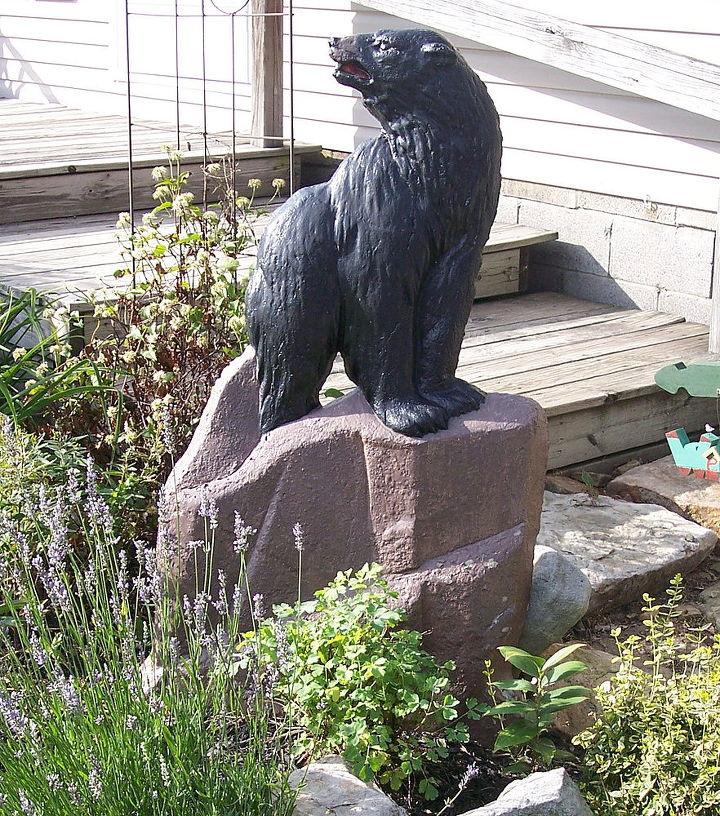 This is him as a black bear in the garden last year.