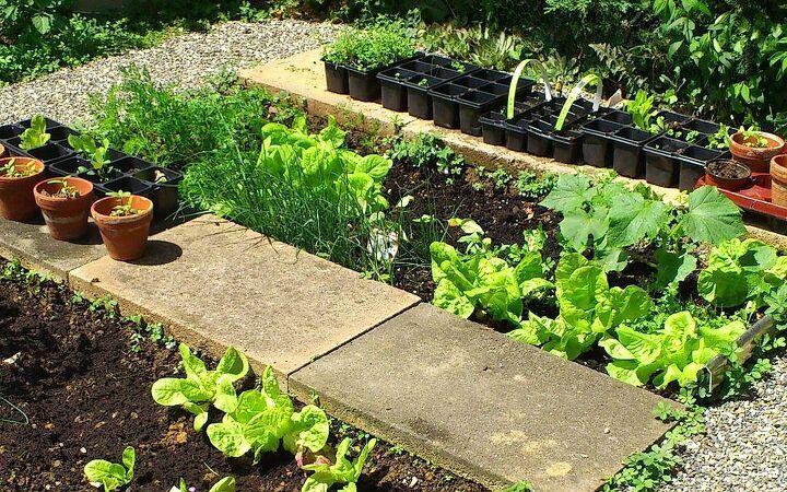 different fiews, gardening