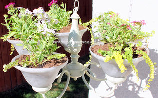 planting in a chandelier, gardening, lighting, repurposing upcycling, Planting in a chandy
