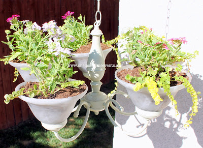 Planting in a chandy