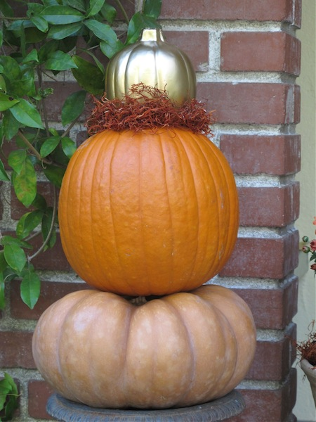 I really can't get enough pumpkins...it is a little crazy!