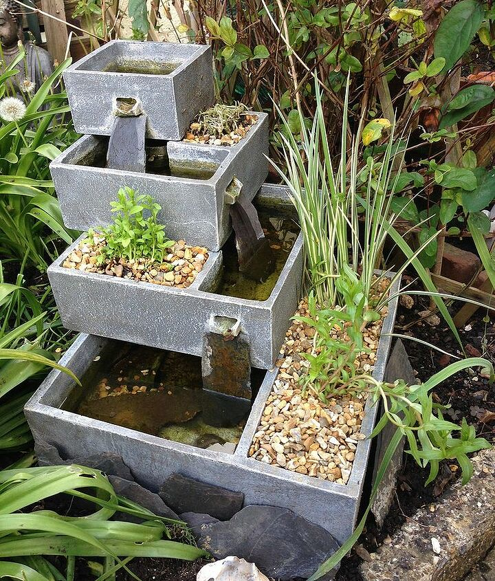 Putting Aquatic Plants In A Water Fountain Planter Hometalk