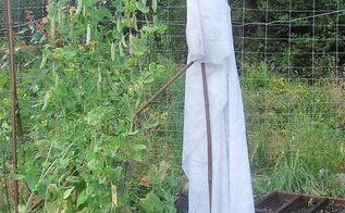the friendly garden ghost, gardening