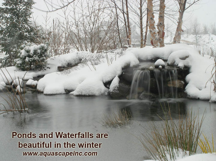 If you leave your pond running during winter, you'll be rewarded with beautiful scenery.