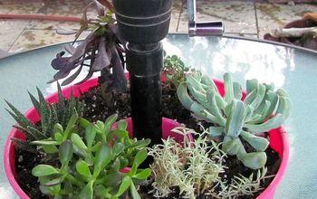 umbrella planter on the cheap side, gardening