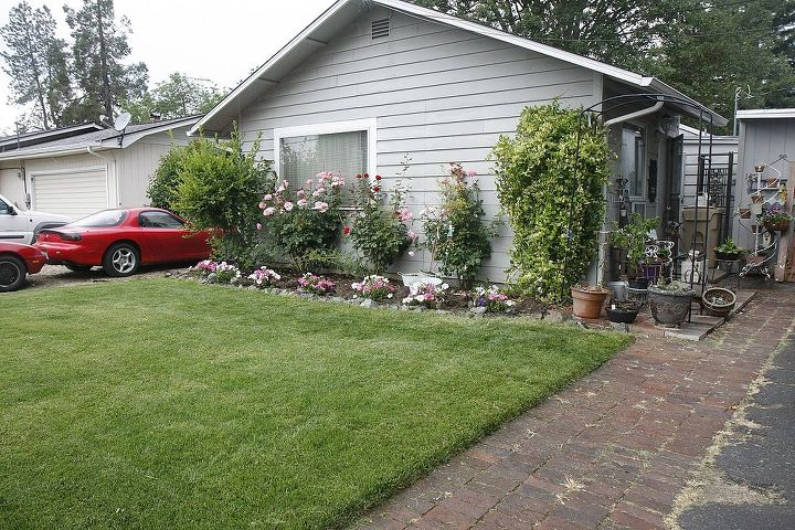 Ok here is the sod this year, still working on the flowerbed