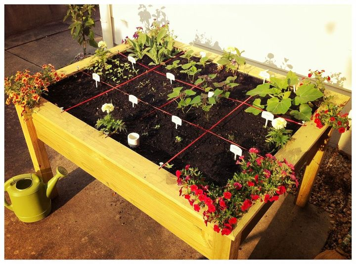 1. Companion Flowers - Marigold, Petunia and Zinnia are the cheerleaders of veggie teams.