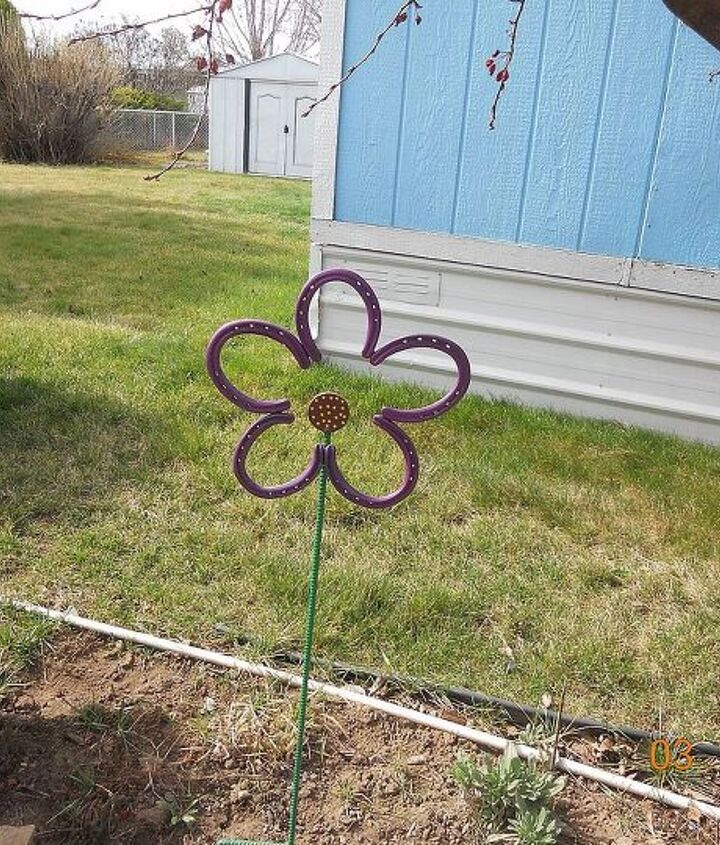 my first flower of spring, flowers, gardening