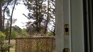 q magic mesh door, doors, screen open