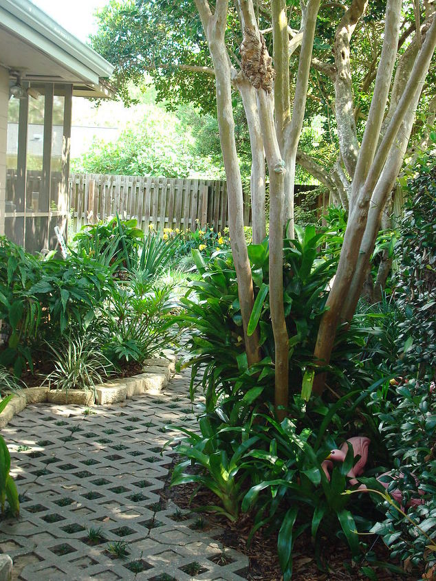 Crepe Myrtle tree; jasmine greeting at the gated entrance.