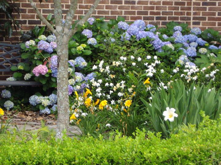 Pocket garden..