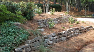 q ideas for a 3 tiered back yard that go down not up ugly, gardening