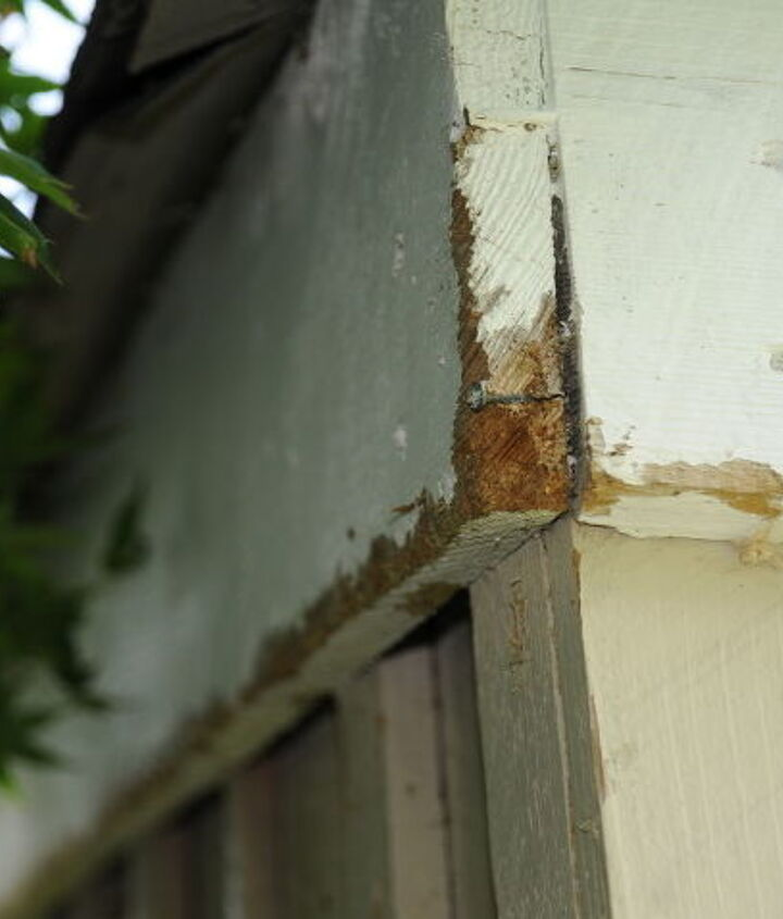 q what could be eating my wood siding, curb appeal, home maintenance repairs, pest control