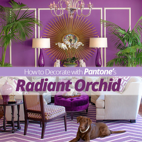 decorating with pantone s radiant orchid, home decor, painting
