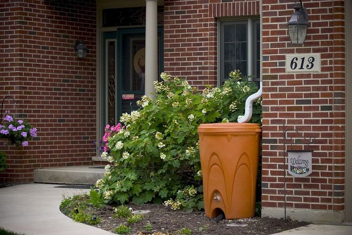 cut down your water bill by providing free rainwater for irrigation, container gardening, gardening, go green, landscape