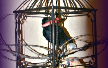 turning a bird cage into a halloween decoration, halloween decorations, repurposing upcycling, seasonal holiday d cor
