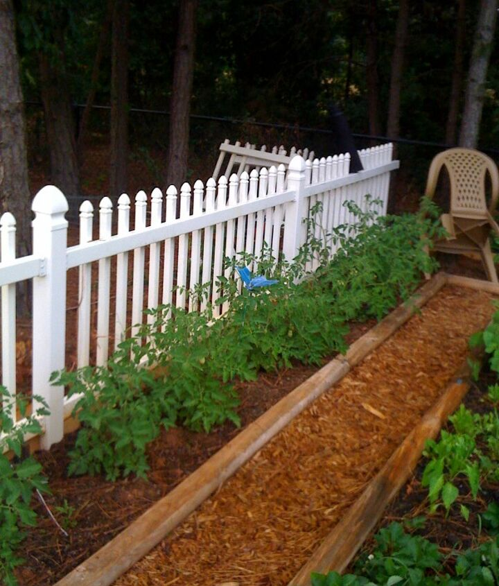 I planted Tomatoes on the left side last year.  They did not do very well.  I believe it was due to much sun and heat.