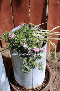 container gardening in chicken feeder, container gardening, gardening