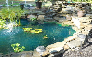 first pond ever, outdoor living, patio, ponds water features, pond