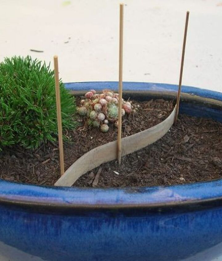 Making your  miniature garden is just like making a larger garden, just smaller!