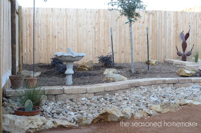 Creating a xeriscape backyard landscape hometalk for Xeriscaped backyard design