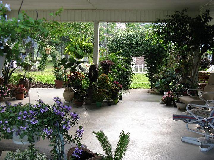 my porch patio, gardening, patio, porches