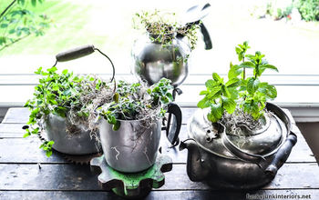 make an old kettle herb garden in seconds, gardening, repurposing upcycling, How pretty do these kettles make for potted plants