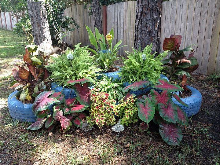 my shade garden, gardening, repurposing upcycling