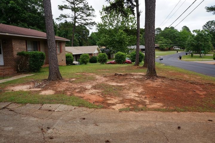 here is a better view of what i am working with 4 pines how can i make this sellable, landscape, real estate