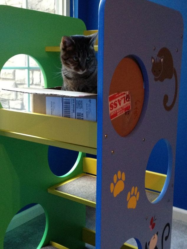 A room with a view! Cat tower that was unfinished birch, painted and then stenciled.