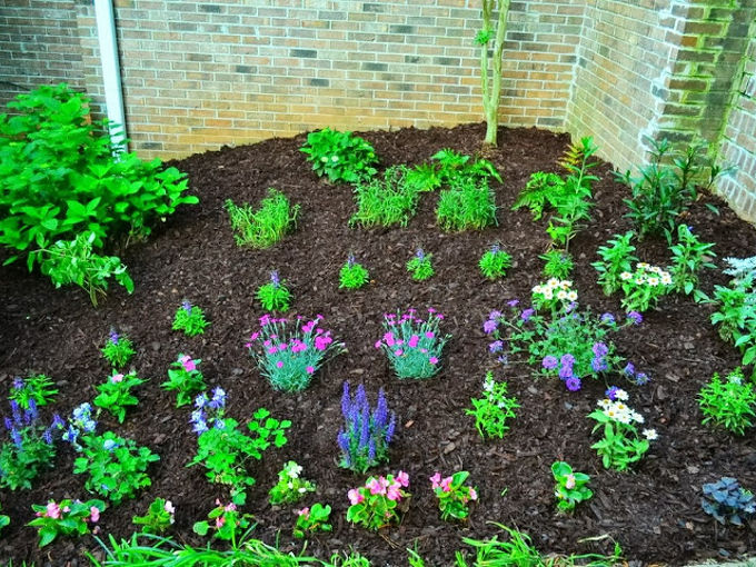 landscaping the yard, gardening, landscape, May
