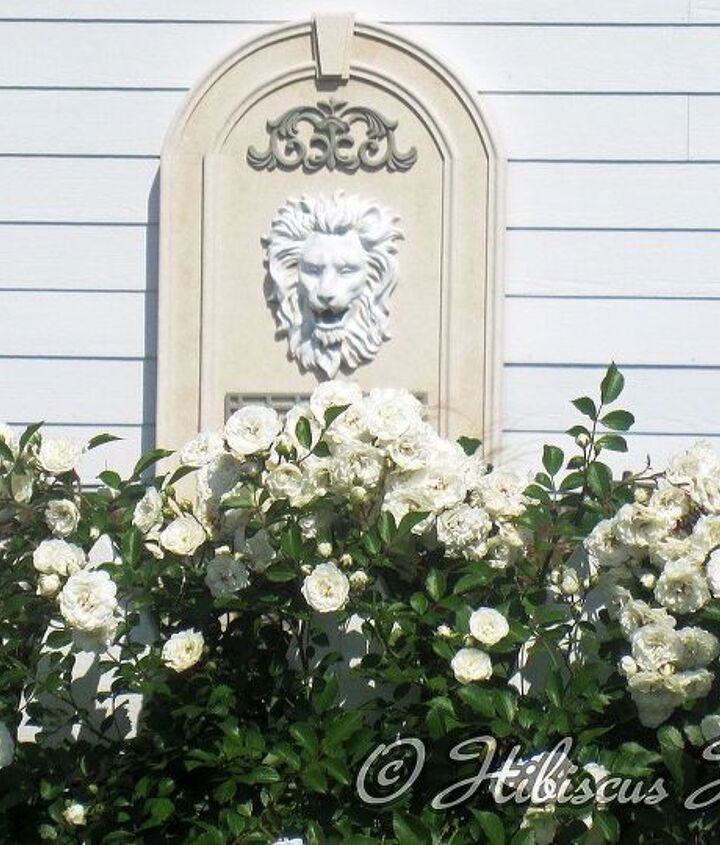 I love my lion fountain!