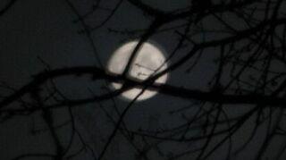 , I also like to take moon shots