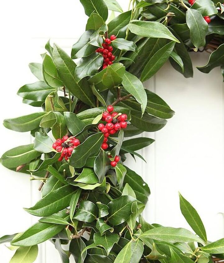 A close up of the holly and laurel branches.