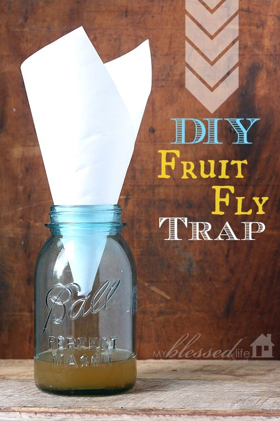 DIY Fruit Fly Trap made with a jar, piece of paper, apple cider vinegar and liquid dish detergent.