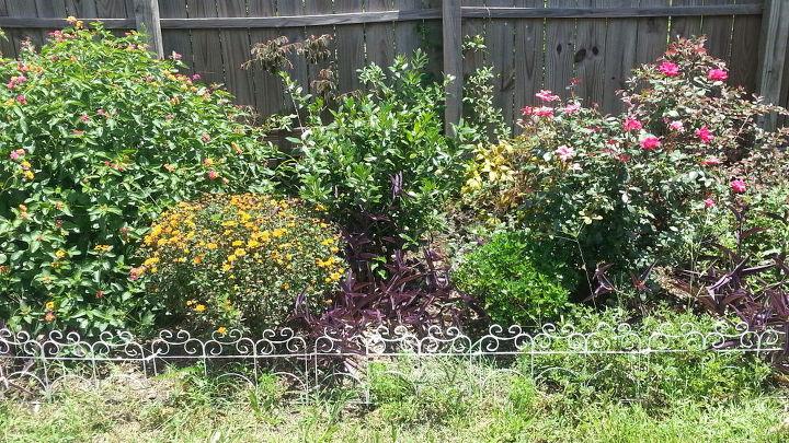 q what could i do to make my frontyard garden pop, gardening, outdoor living